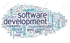 avm-software-development